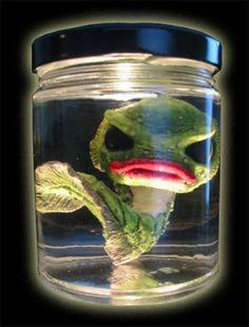 The Devonian Tadpole - 9 ounce jar.